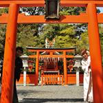 吉田神社での撮影
